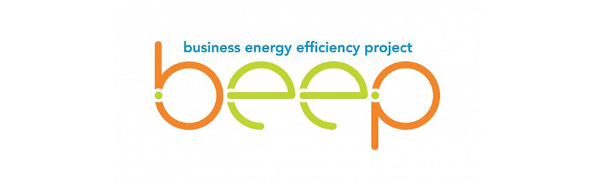 Business Energy Efficiency Project