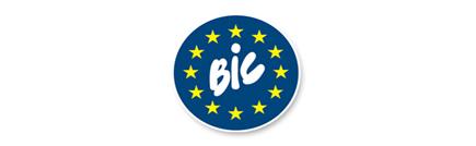 BIC IT Services